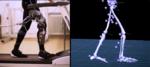 步态分析研究· 骨骼动作捕捉