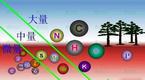 J200元素分析系統碳氮磷元素的測量