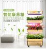 智能生态柜植物空气净化器
