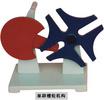 電動、手動導軌式磁板繪圖機