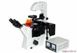 安徽省荧光倒置显微镜MF52