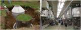 SOILSCOPE 生態水文過程觀測模擬設施