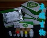 旋吸虫抗体检测试剂盒
