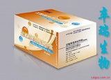 副伤寒抗体检测试剂盒