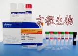 猴子白介素2受体(IL-2R)酶联免疫ELISA试剂盒