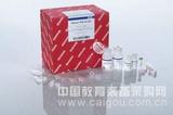 QIAGEN Plasmid Midi Kit (25) 德国qiagen12143