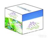 人单核细胞趋化蛋白2(MCP-2/CCL8)ELISA试剂盒