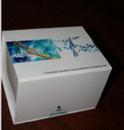 柯萨奇病毒抗体(IgG\IgM)金标试剂盒