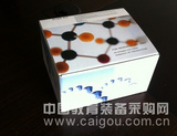 脂肪酶(LPS)检测试剂盒(比浊比色法)