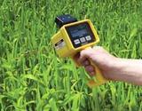 美国SPECTRUM品牌  CM1000叶绿素测量仪