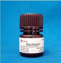 Bacitracin杆菌肽