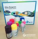 p-ERK1;2,大鼠磷酸化细胞外信号调节激酶ELISA试剂盒价格