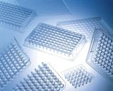 丹麦NUNC 原装96孔PCR板