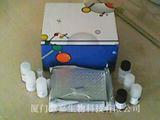 人激肽释放酶6(KLK 6)ELISA试剂盒