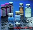 猴白介素1a (IL-1 a )ELISA试剂盒