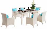 戶外休閑家具/藤家具桌椅/酒店桌椅