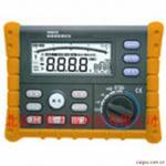 数字绝缘电阻测试仪 型号:DZYH512