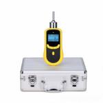 TD-SKY2000-EX泵吸式天然气检测仪