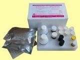 人钙联蛋白(calnexin)ELISA试剂盒说明书kit价格