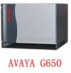 AVAYA G650 媒體網關