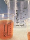 碱性β-萘酚试液