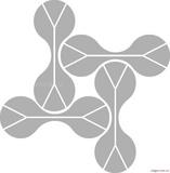 大兔肝实质细胞总蛋白质抽提物