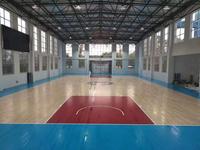 運動木地板   實木運動地板 籃球場館地板