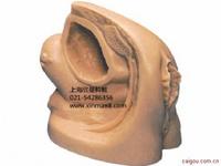 高級女性導尿外生殖器模型 女性生殖器模型