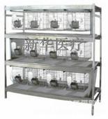 干养式兔笼