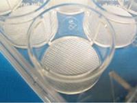 三維細胞培養支架/皿/板/瓶/器/3D Insert?-PCL3030/PCL3050