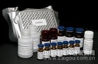 碱性成纤维生长因子受体bFGFR ELISA试剂盒