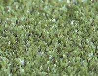 供应曲棍球场专用草
