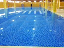 選擇泳池除濕機哪種比較好 廣州普派克