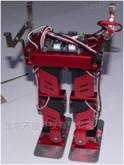 小型雙足機器人