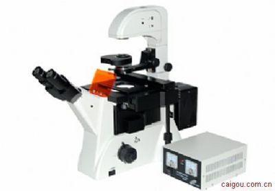 郑州荧光倒置显微镜MF52