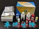 铋试剂Ⅰ/2,5-二巯基-1,3,4-硫代二氮唑/二硫醇硫代二氮唑