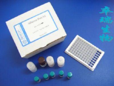 大鼠白介素1β (IL-1β)Elisa试剂盒