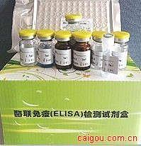 犬白三烯C4(LTC4)ELISA试剂盒