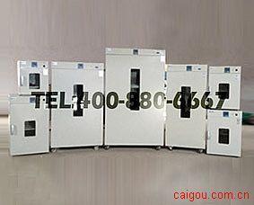 恒温干燥箱(300℃)