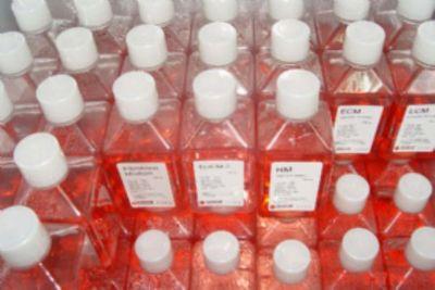 酸性 L-J 培养基