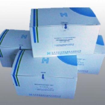 大鼠的牛血清白蛋白残留检测ELISA试剂盒