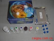 人硫酸角质素(KS)ELISA试剂盒