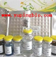 人肝细胞核因子4α(HNF4α)ELISA试剂盒