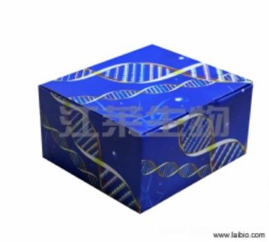 人低密度脂蛋白受体相关蛋白6(LRP-6)ELISA试剂盒说明书