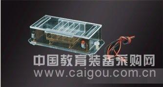 大号水平电泳槽  水平电泳槽  型号:JXH-DY-35