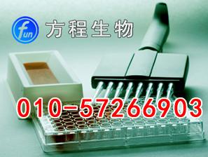 小鼠精氨酸加压素受体1BELISA Kit价格,AVPR1B进口ELISA试剂盒说明书北京检测