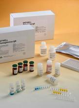 烟碱型乙酰胆碱受体ELISA试剂盒厂家代测,进口大鼠(N-AChR)ELISA Kit说明书