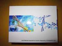 小鼠IL-1β试剂盒价格,小鼠白介素1β(IL-1β)ELISA试剂盒