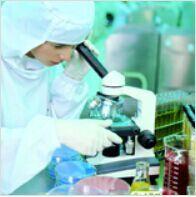 进口标准品2-羟基乙炔基雌二醇