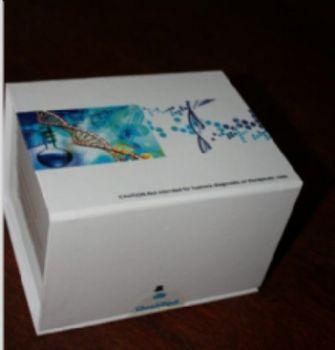 幽门螺杆菌抗体(IgG\IgM)金标试剂盒